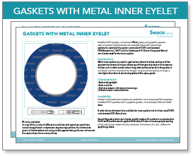GASKETS-WITH-METAL-INNER-EYELET